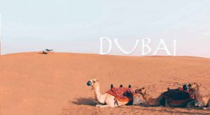 Travel: Vacation In Dubai | Stay At The Tallest Hotel In The World JW Marriott Marquis Hotel | & much more