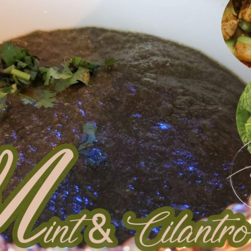 Mint & Cilantro Chutney | Unbelievably Tasty Must Try |