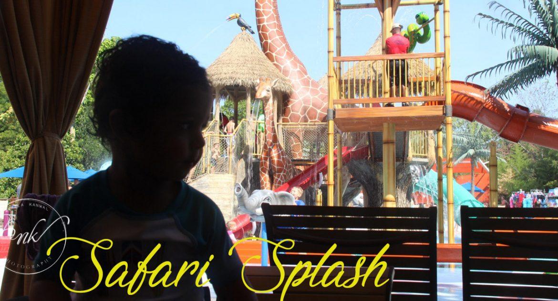 Safari Splash Fort Worth Zoo | Fun For The Whole Family