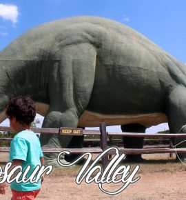 Dinosaur Valley State Park, Texas