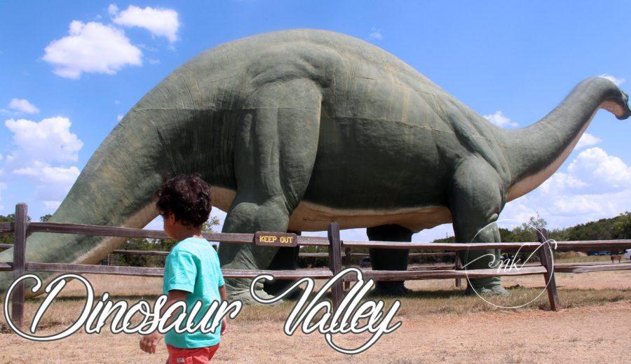 Dinosaur Valley State Park, Texas